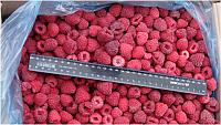 Raspberry business